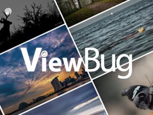ViewBug